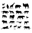 set of black silhouettes of different animals and vector image