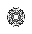 black pattern flower mandala vector image vector image