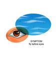 flies before eyes symptom of eye diseases vector image vector image
