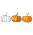 pumpkin vintage engraving vector image vector image
