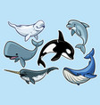 set cheerful various whales vector image