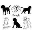 beagle set collection pedigree dogs black vector image