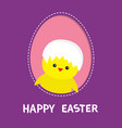 Happy easter chicken bird with shell on head