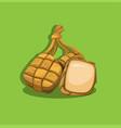 ketupat or rice cake for ramadan traditional food vector image vector image