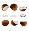 realistic coconut fruit set isolated vector image vector image