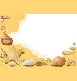 sandy background with seashells vector image