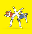 taekwondo fighting vector image