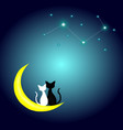 two cats in love sitting on the crescent moon vector image