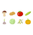 different kinds of vegetables icons in set vector image vector image