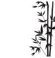 hand drawn bamboo branches for your design vector image vector image