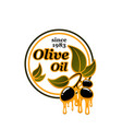 olives icon for olive oil vector image vector image