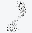 silhouette of a flock of birds black contours vector image