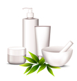 Spa cosmetics vector image