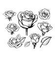 black outline rose set on white background vector image