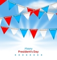 Bunting Flags in Patriotic Colors of USA for Happy vector image vector image