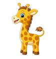 cartoon little giraffe on white background vector image vector image