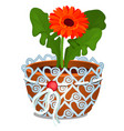 orange flower calendula officinalis or vector image