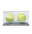 tennis balls in glass case sports game trophy vector image