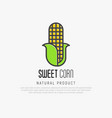 thin line icon of corn for logo vector image vector image