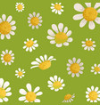 chamomile field flowers on green background vector image