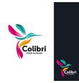 colibri logo design template vector image