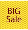 Big sale icon symbol Flat modern web design with vector image