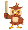 owl with sword on white background vector image vector image