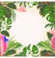 seamless frame tillandsia cyanea bouquet vector image