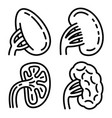 spleen icons set outline style vector image vector image