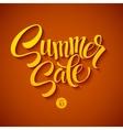 Summer sale message on orange background vector image