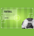 football field and ball vector image
