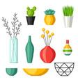 home decoration vases flower pots succulents vector image
