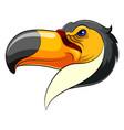 Mascot head an toucan