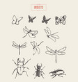 set dragonflies butterflies drawn sketch vector image