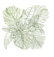 sketch composition with tropical leaves vector image vector image