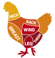chicken cuts diagram vector image vector image
