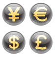 Currency buttons vector image