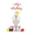 dog birthday party greeting card vector image vector image