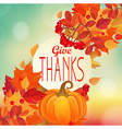 Give thanks - autumn background with pumpkin vector image vector image