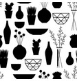 home decoration vases flower pots succulents and vector image vector image