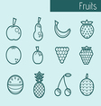 Icons of fruits vector image vector image