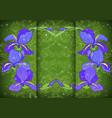 iris frame vector image