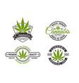 medical cannabis labels and logos vector image