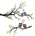 Owls in love on tree vector image