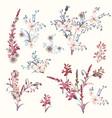 set field flowers for design vector image