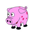 sweet little pink piggy vector image vector image