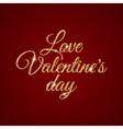 Valentine s Day text vector image vector image