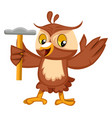 owl with hammer on white background vector image vector image