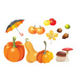 set of autumn objects pumpkins different types vector image