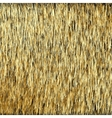 Abstract Background Golden Threads Scratched Gold vector image vector image